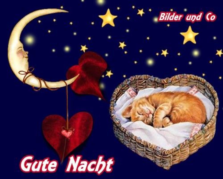 Gute Nacht bilder gratis 326