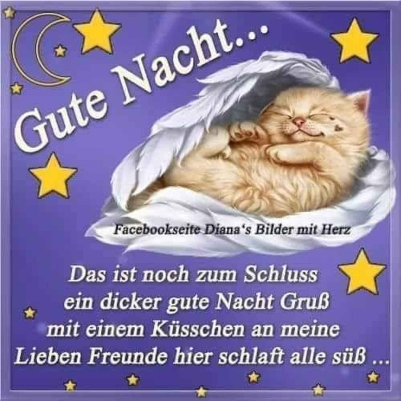Gute Nacht Bilder Und Sprüche Whatsapp Gbpicsbildercom