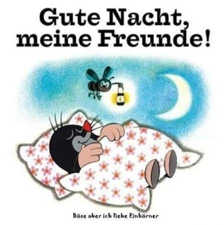 Gute Nacht und Süße Träume 240