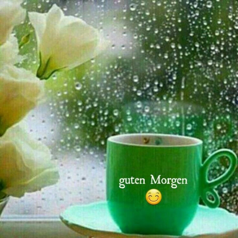 Guten Morgen Regen Bilder Gbpicsbildercom