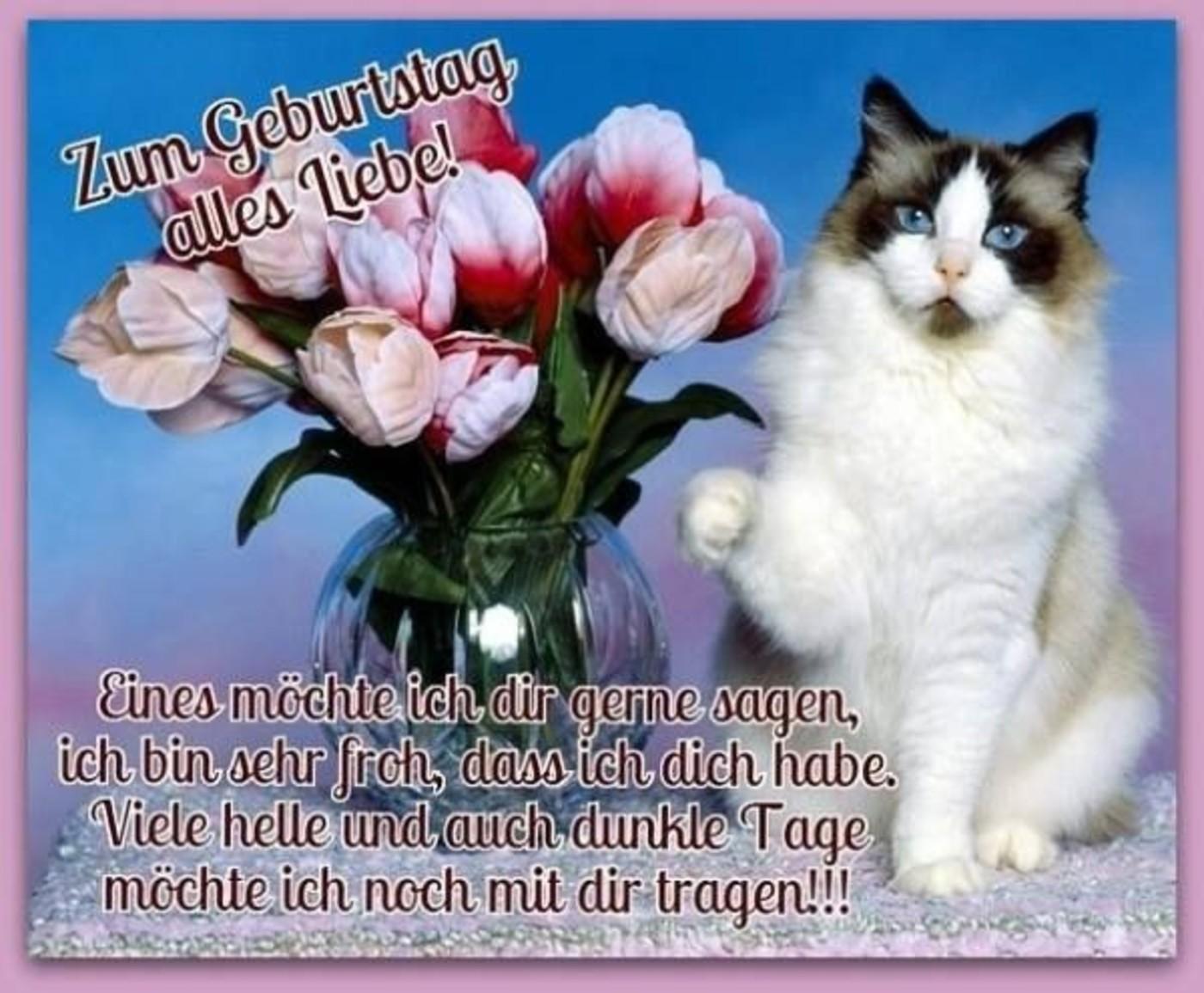 Zum Geburtstag Alles Liebe