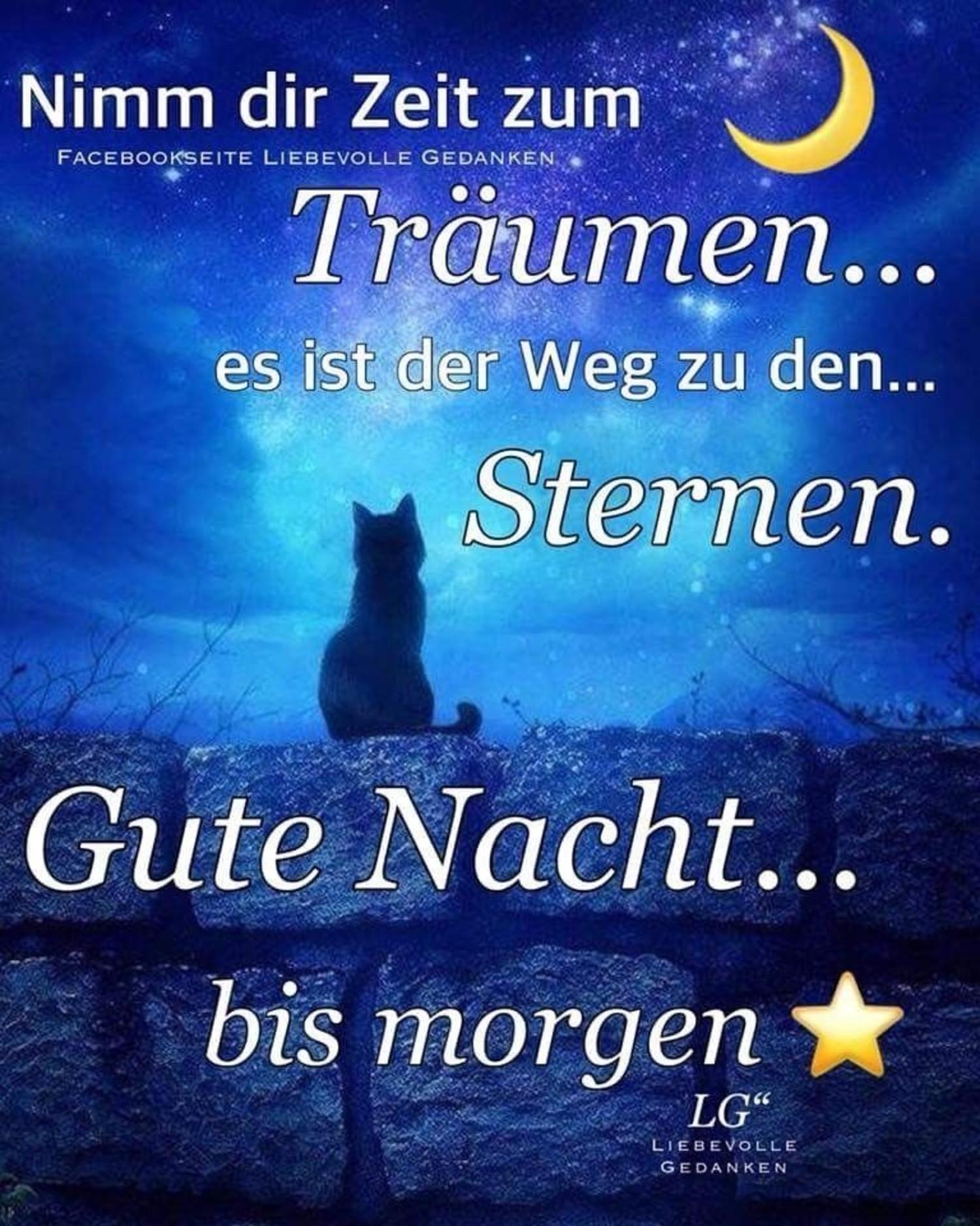 Bilder Gute Nacht und süsse träume 988 - GBPicsBilder.com