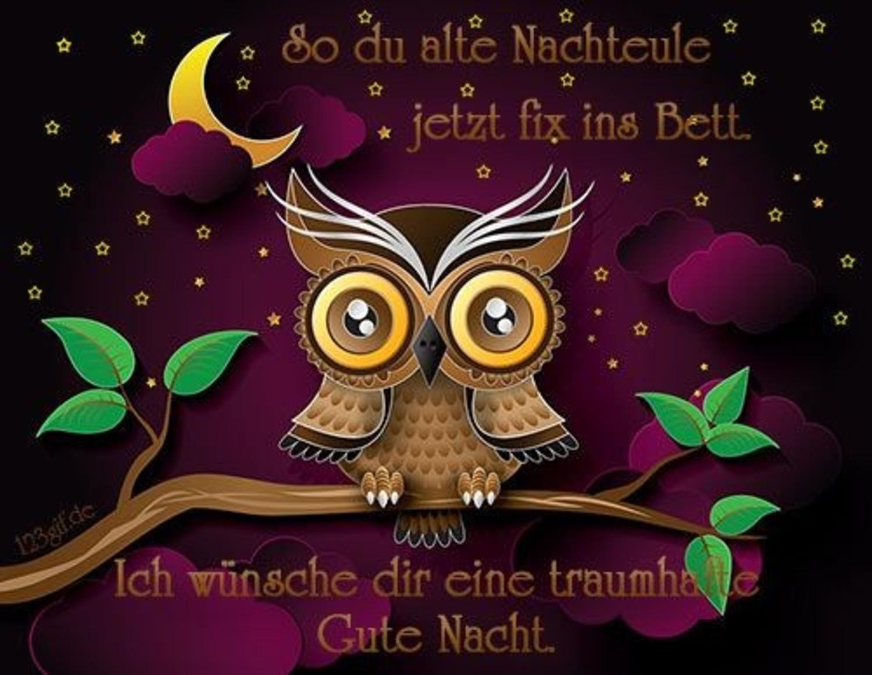 Google Gute Nacht 854