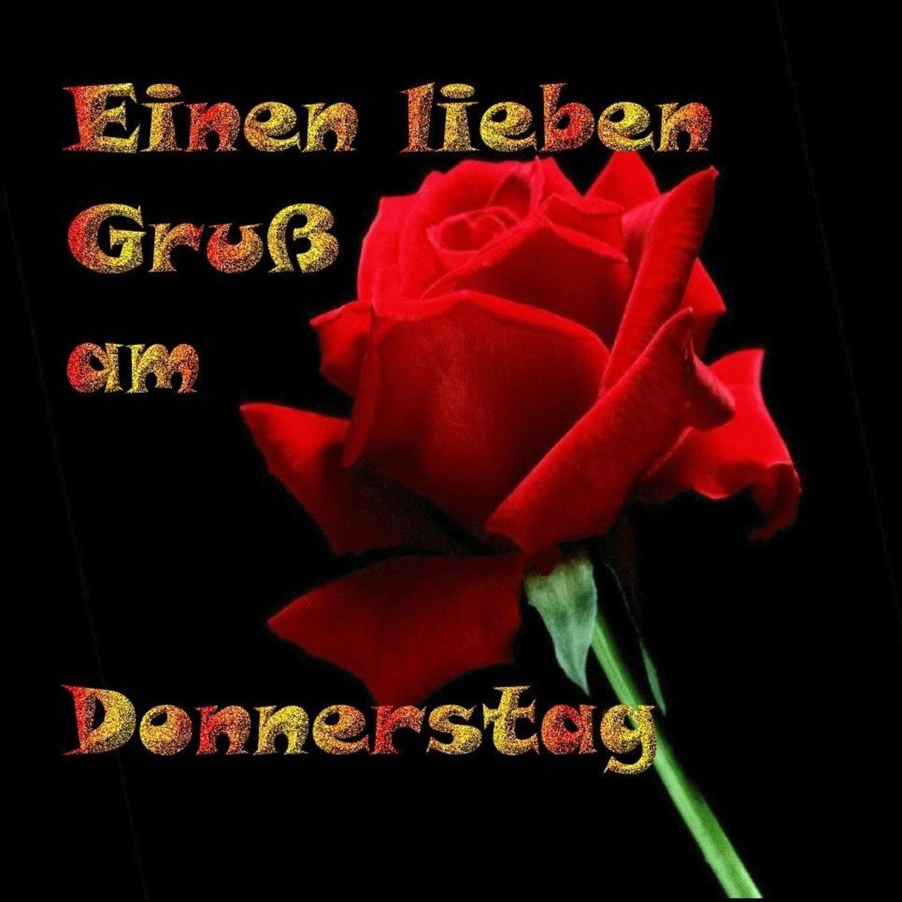 Guten Morgen Schönen Donnerstag Meine Liebe 7 Gbpicsbildercom