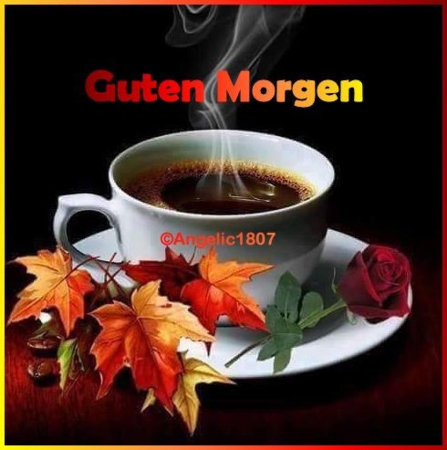 Guten Morgen Herbst Bilder 582 Gbpicsbildercom