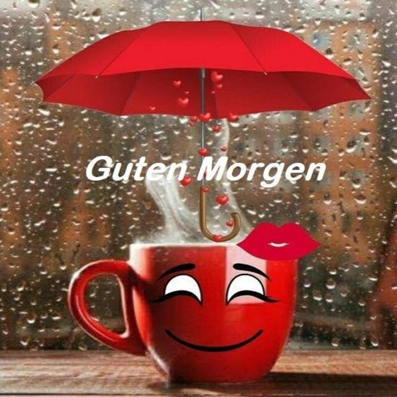 Guten Morgen Regenwetter 682 Gbpicsbildercom