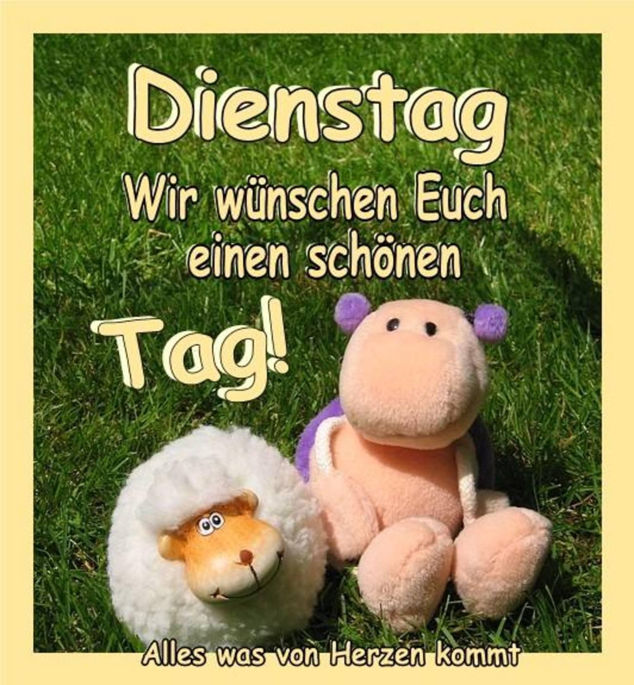 Guten Morgen Schönen Dienstag Freunde 98 Gbpicsbildercom