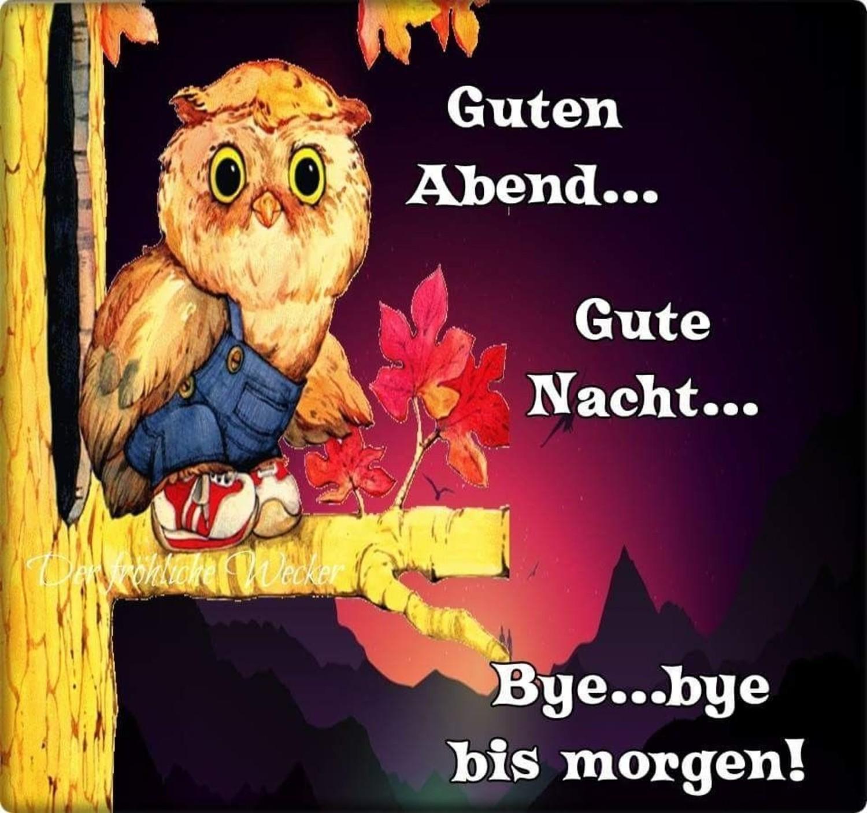 Pinterest Gute Nacht 848 Gbpicsbildercom
