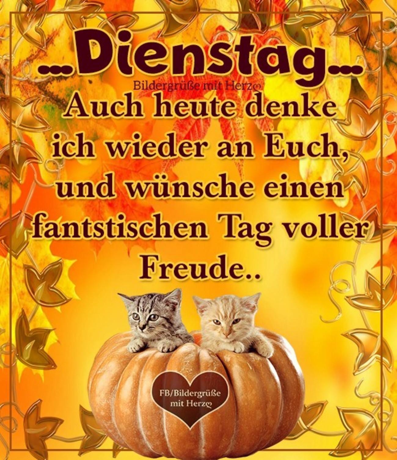 Schönen Dienstag Herbst 28 Gbpicsbildercom