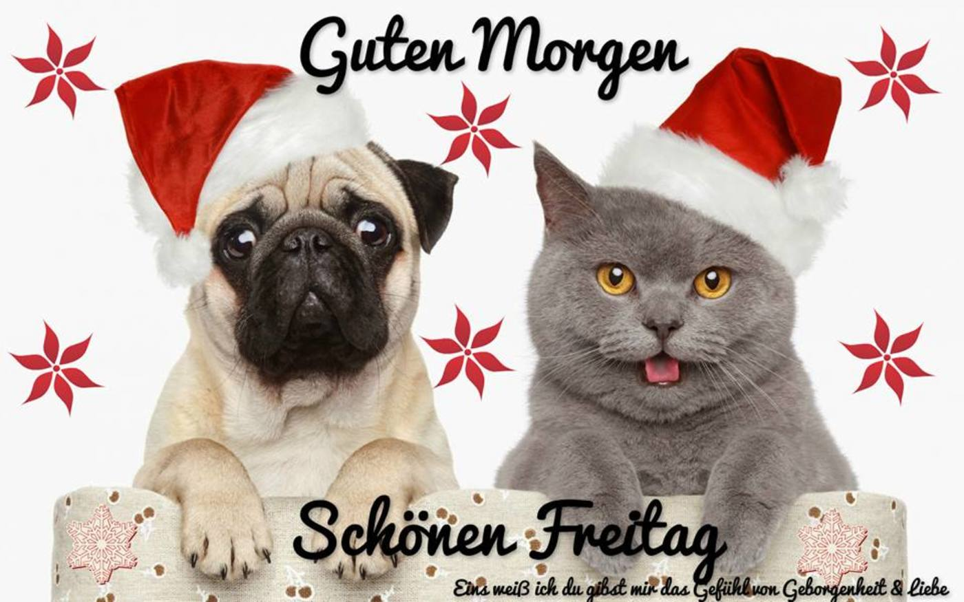 Schönen Freitag Guten Morgen Weihnachten Gbpicsbildercom