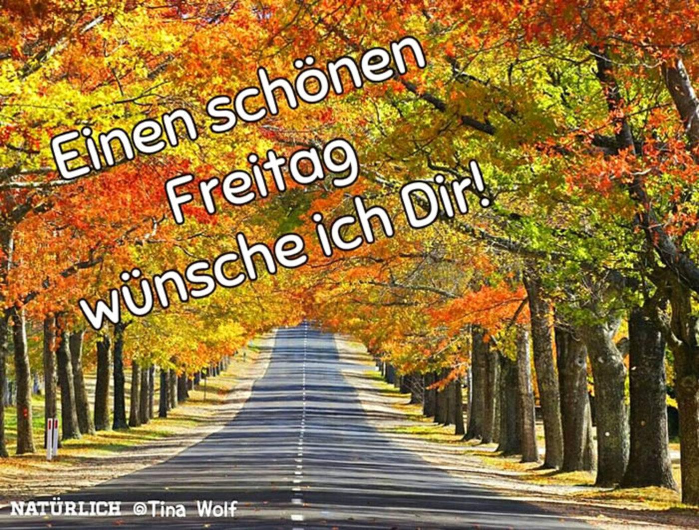 Schönen Freitag Guten Morgen Herbst Gbpicsbildercom