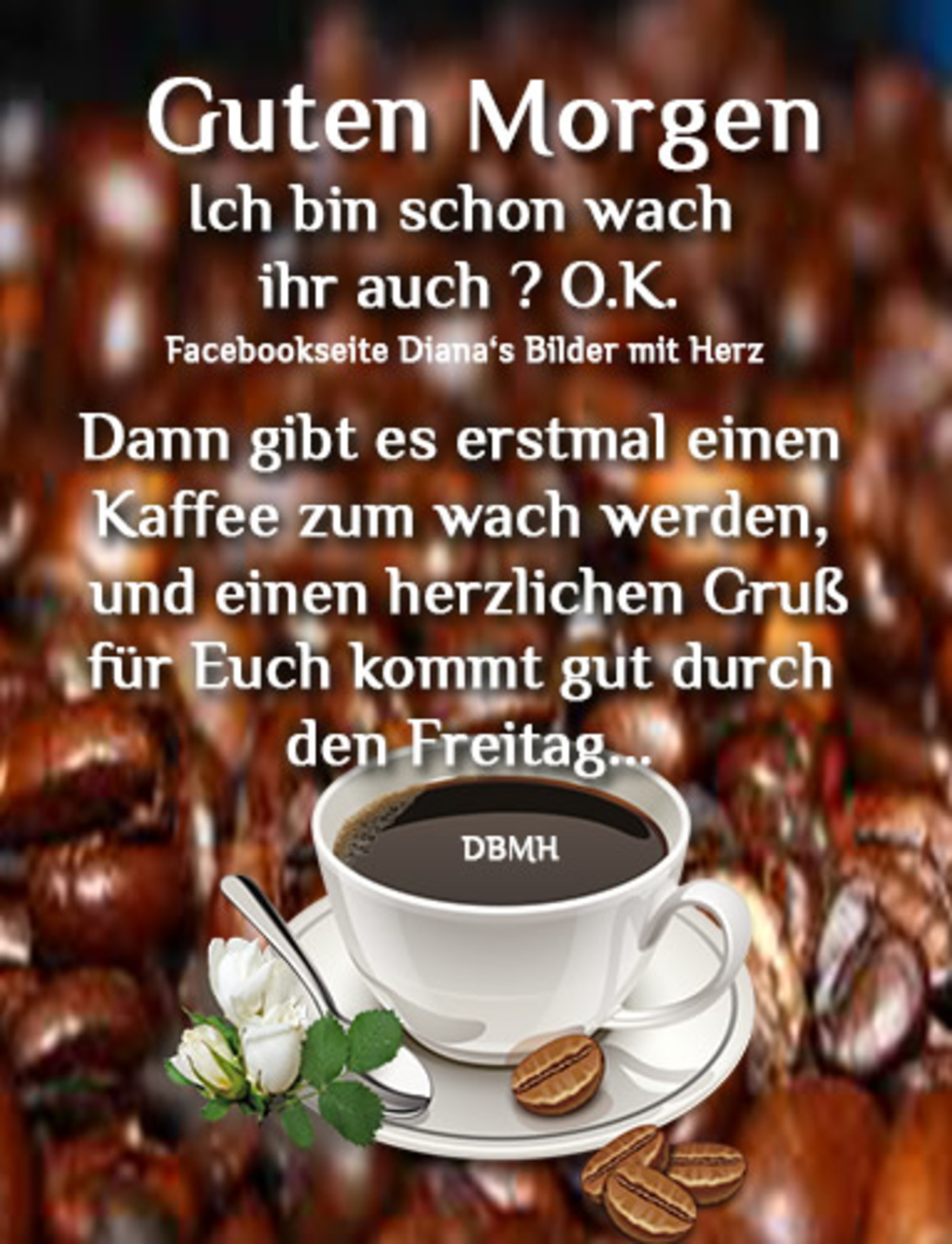 Kaffee Lustig Guten Morgen Freitag