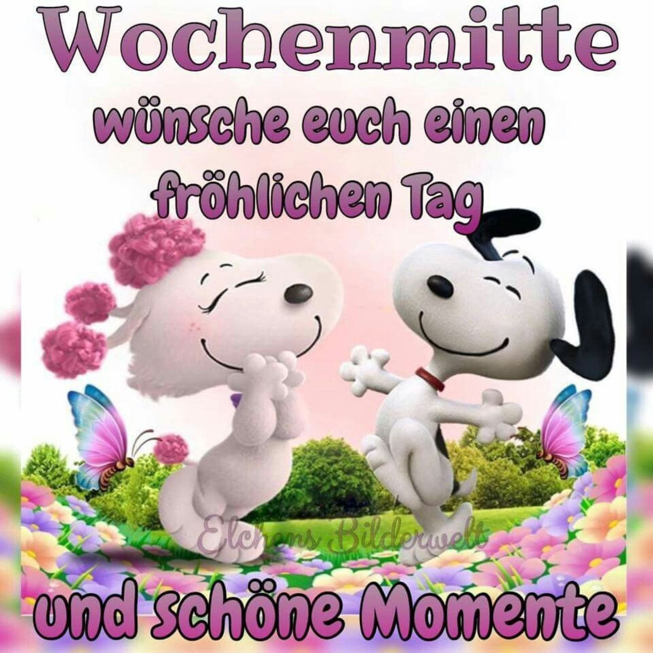 Schönen Mittwoch Snoopy Gbpicsbildercom