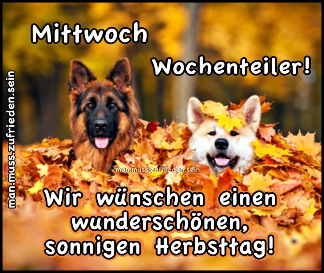 Schönen Mittwoch Herbst Gbpicsbildercom