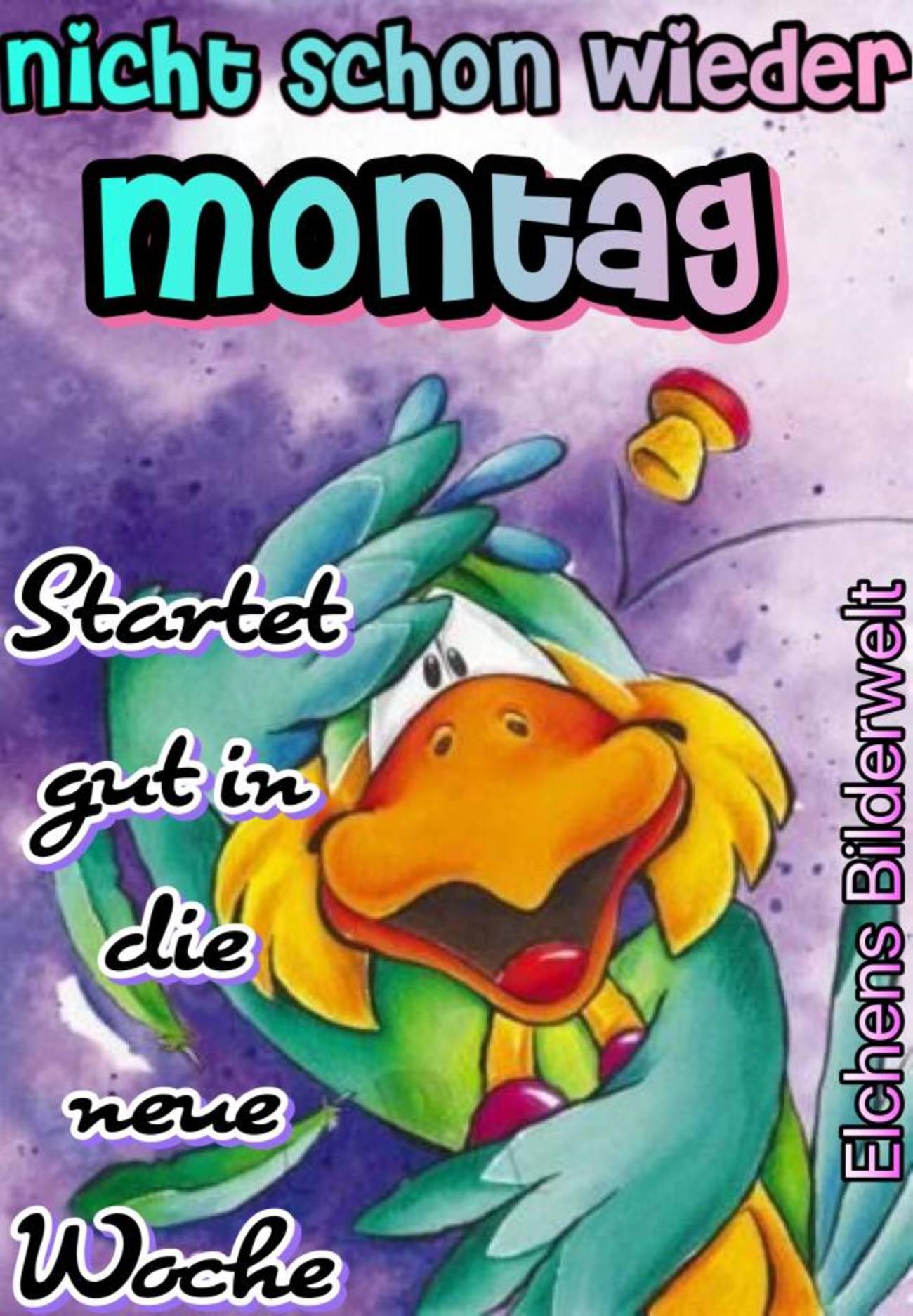 Schönen Montag Pinterest 227