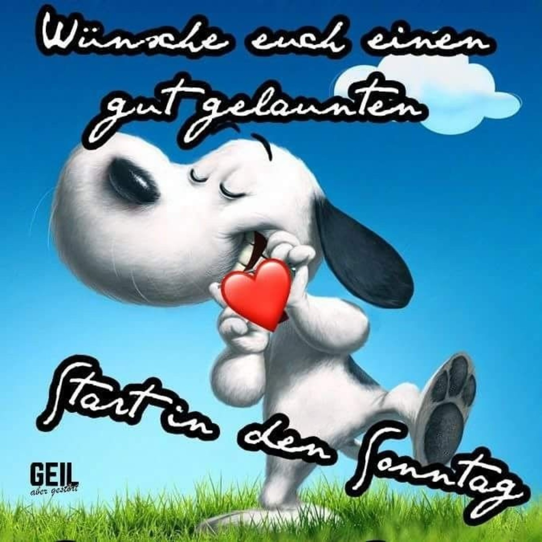 Schönen Sonntag Snoopy Bilder 134 Gbpicsbildercom