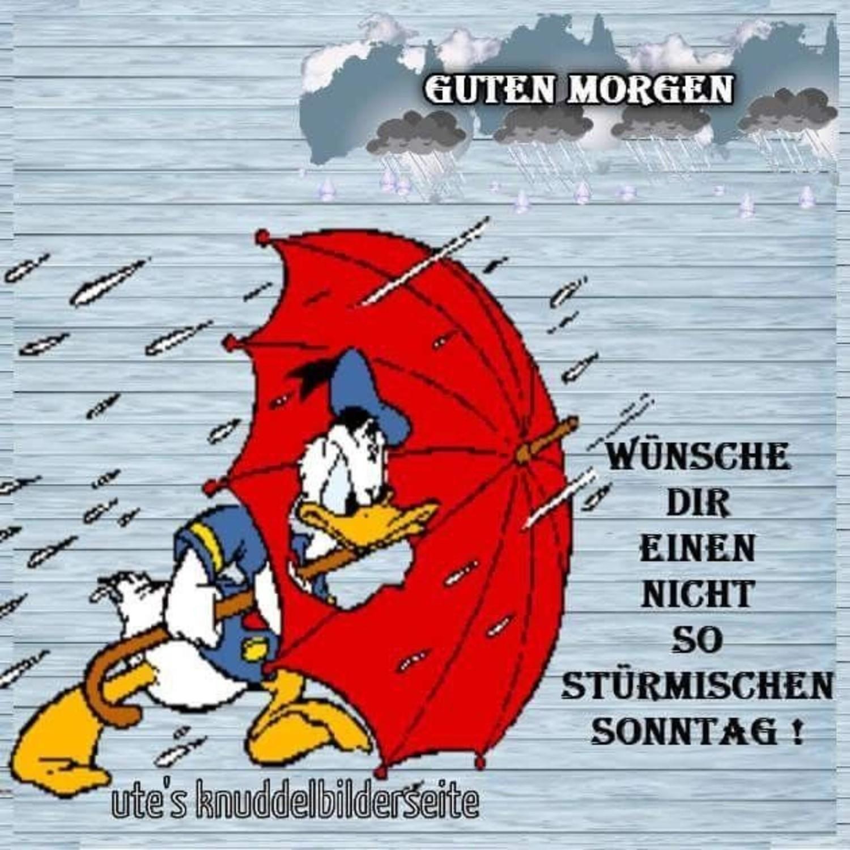 Schönen Sonntag Im Regen Gbpicsbildercom
