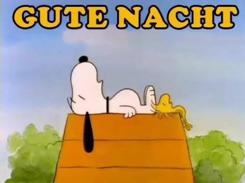 Snoopy bilder kostenlos Gute Nacht Facebook 627