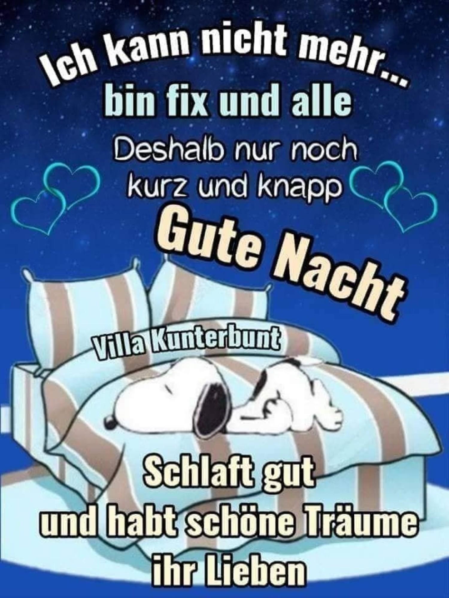 Snoopy Bilder Kostenlos Gute Nacht Facebook 889 Gbpicsbilder Com
