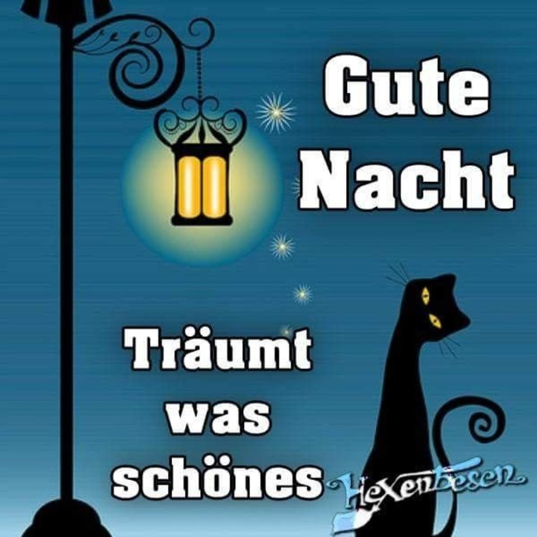 Snoopy Bilder Kostenlos Gute Nacht Facebook Gbpicsbildercom